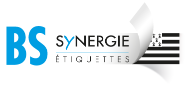 BS Synergie Logo